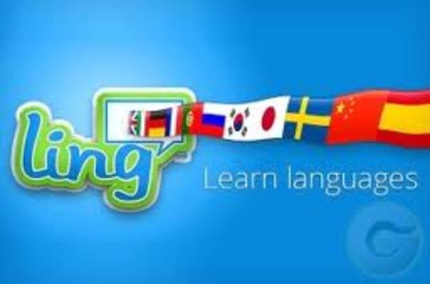 medium_lingq_image.jpg